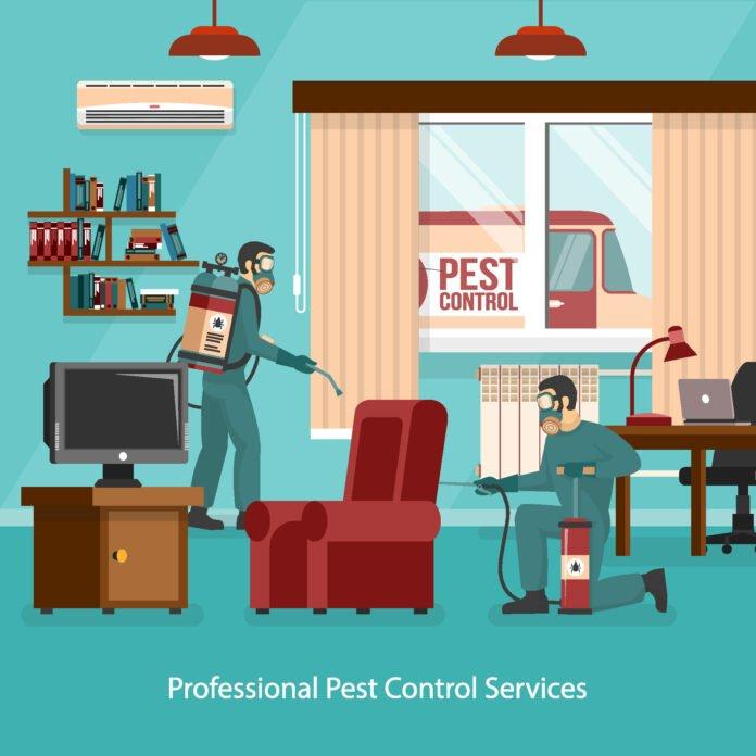 Pest Control in Noida
